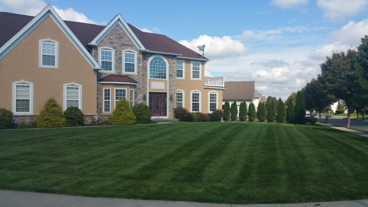 Landscaping Photos Messa Lawn Care